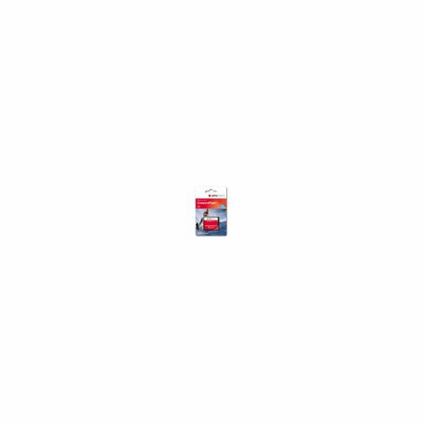 Paměťová karta AgfaPhoto Compact Flash 2GB