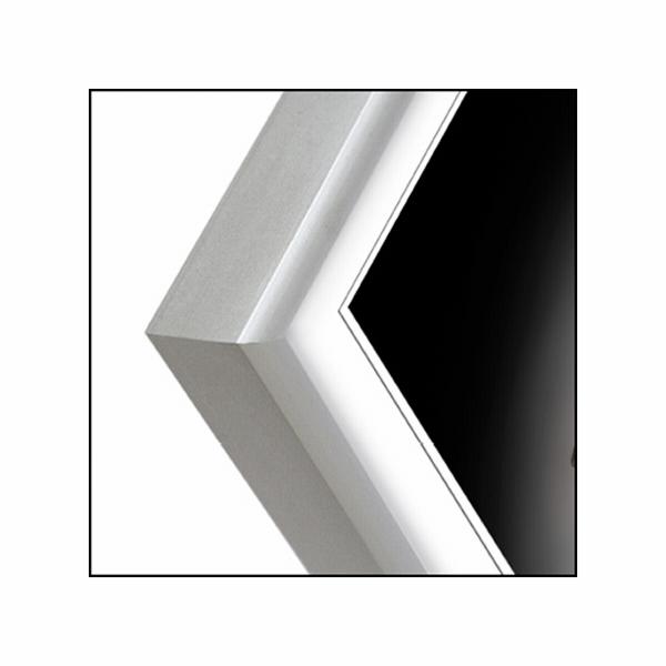 ZEP Basic silver 20x30 Aluminium Frame AL1S4