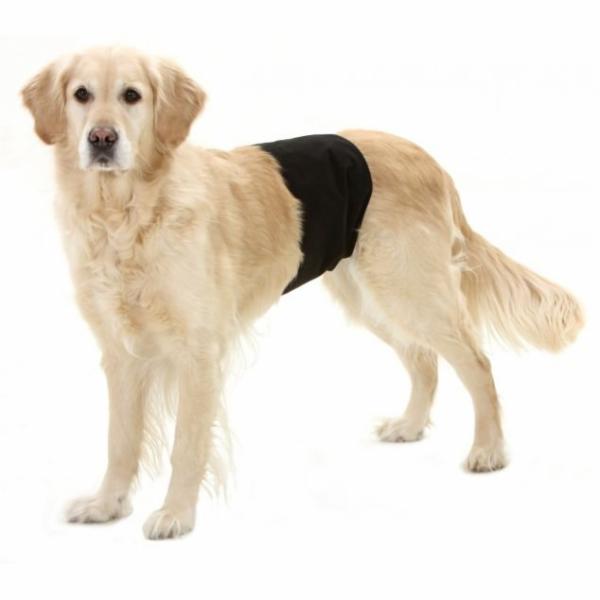 Karlie Inkontinenční kalhoty pro psy černé 49x14cm