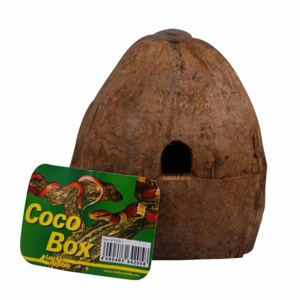 Lucky Reptile Coco Box cca 15x14x16 cm
