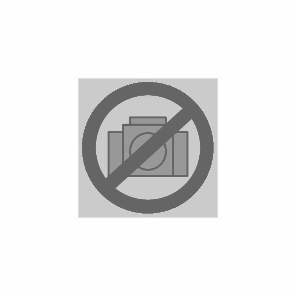 L-Boxx Einlage für GWS 18V-Li