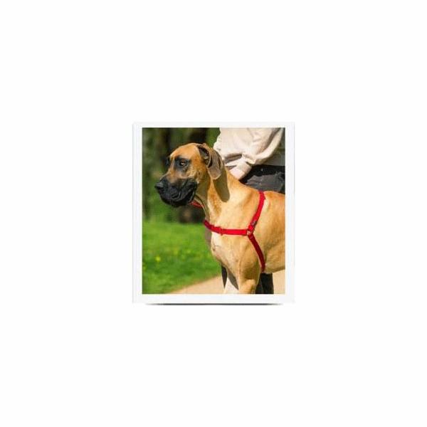 PetSafe postroj, EasyWalk, červený, velikost L