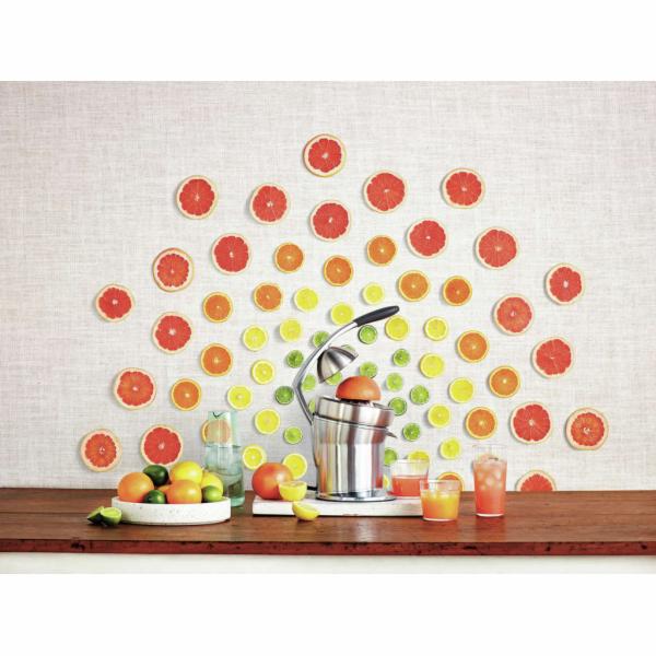 Sage lis na citrusy Citrus Press Pro nerez