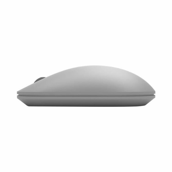 Surface Mouse, Maus