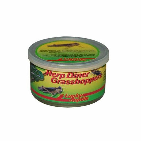 Lucky Reptile Herp Diner - sarančata 35g cca 50 středních